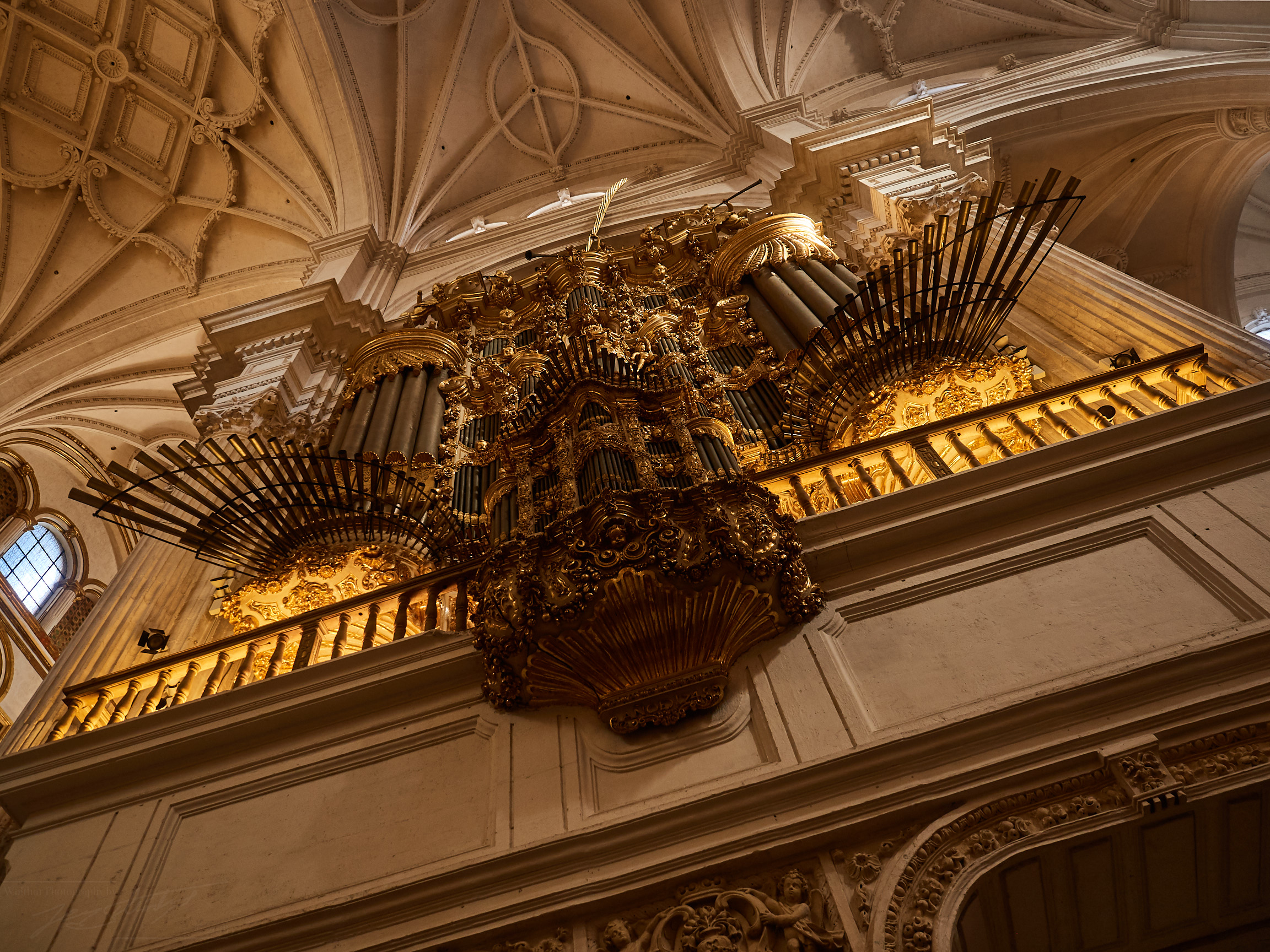 Orgel in der Kathedrale
